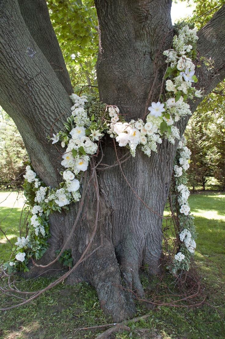 Fleurs et lianes