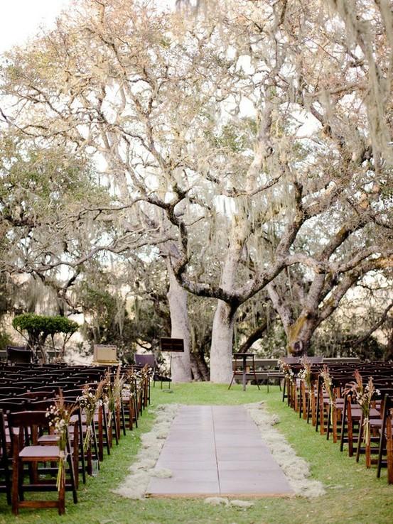 Arche mariage - grand arbre blanc