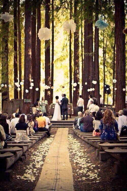 Cérémonie en forêt